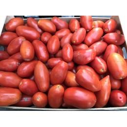 Pomodoro da sugo Puglia in cassa