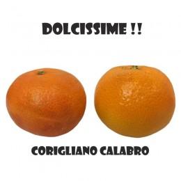 CLEMENTINE MEDIE DI CORIGLIANO CALABRO