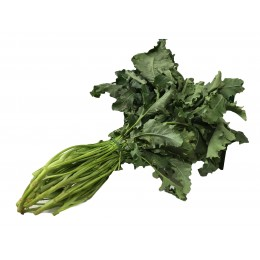 BROCCOLI FIOLARI BIO